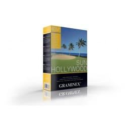 Hollywood sun